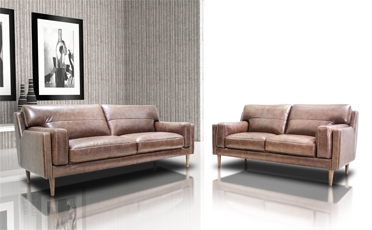 Poshini Sofa & Love Seat / 522006